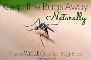 Keep the Bugs Away Naturally {Plus Natural Care for Bug Bites}