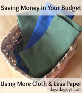 Saving Money in Your Budget by Using More Cloth & Less Paper