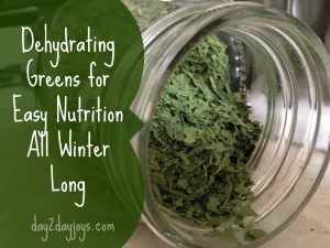 Dehydrating Greens for Easy Nutrition All Winter Long