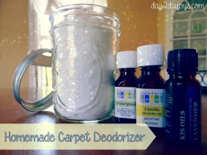 Homemade Carpet Deodorizer