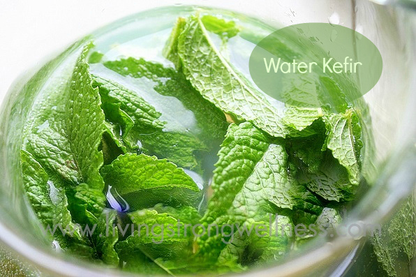 water kefir text