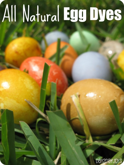All Natural Egg Dyes
