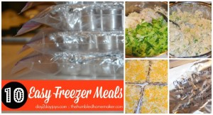 10 Easy Freezer Meals {Including a Family Favorite}