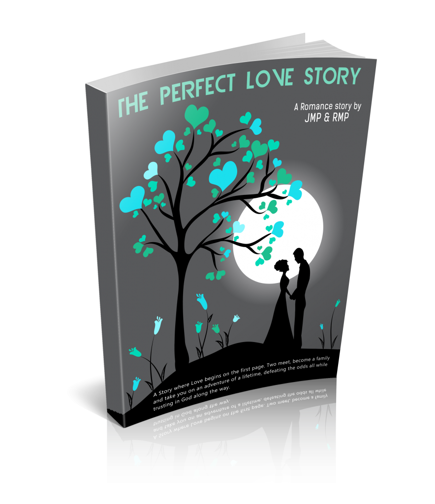 The Perfect Love Story- ebook cover