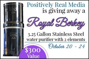 Stainless Steel Water Filter Giveaway {$300 Value}