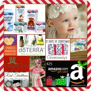 Coming Soon….12 Days of Christmas 2014