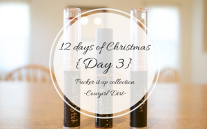 12 Days of Christmas {Day 3: Cowgirl Dirt Makeup}