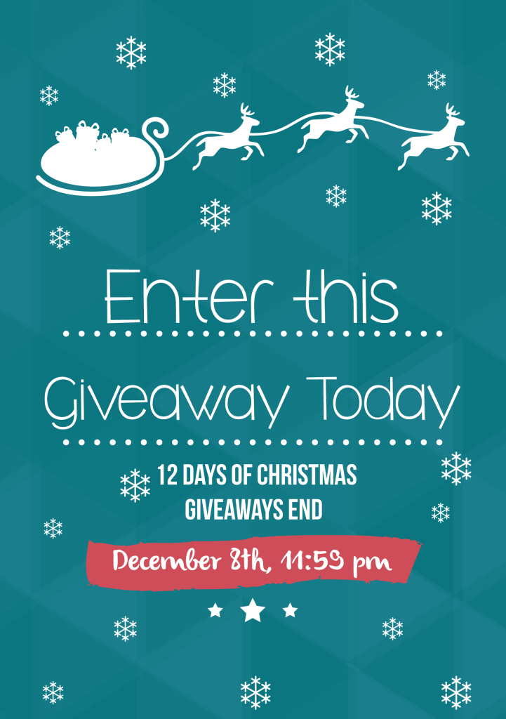 Enter this Christmas Giveaway!!