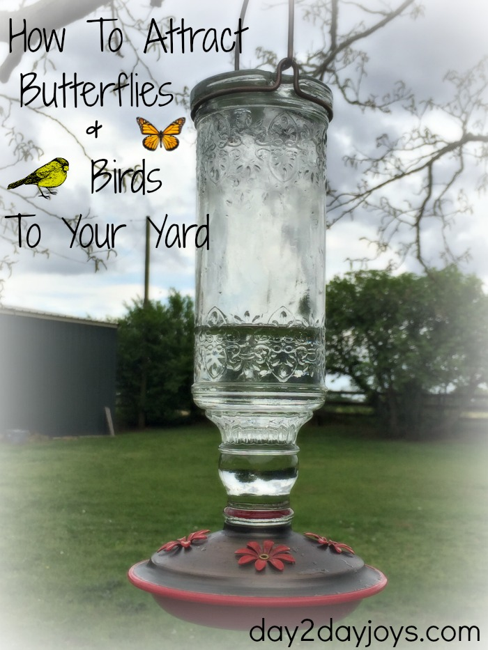 Superbe How To Attract Butterflies U0026 Birds To Your Yard