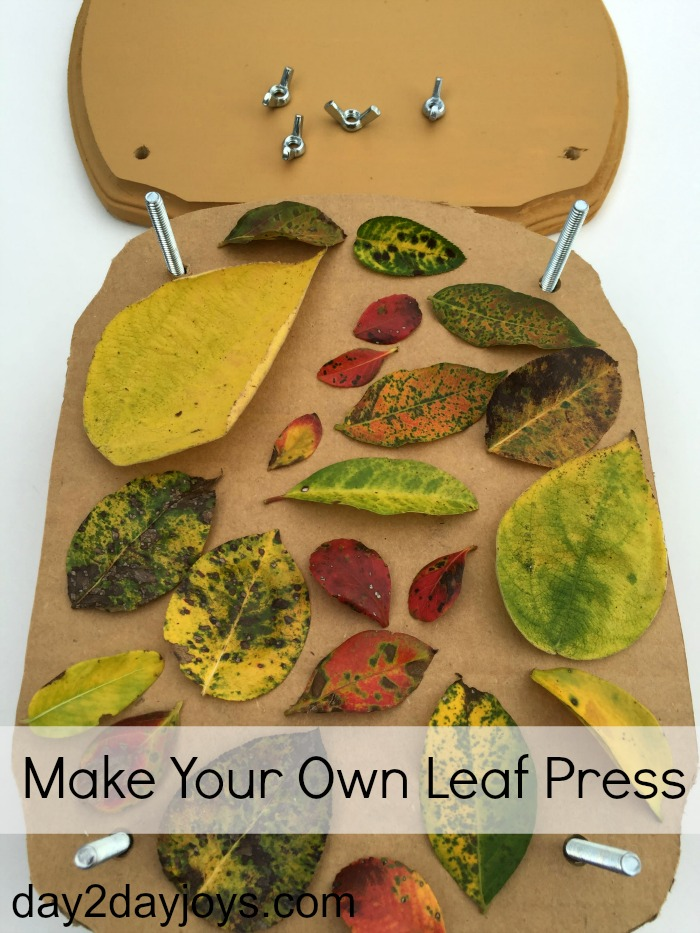Quite a few years ago, when our oldest boys were still pretty small, my husband helped me make our own leaf press. This year, it's time to add a new press!