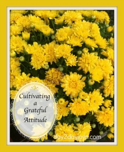 Cultivating a Grateful Attitude