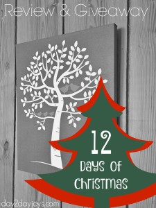 12 Days of Christmas {Day 1: Canvas on Demand}