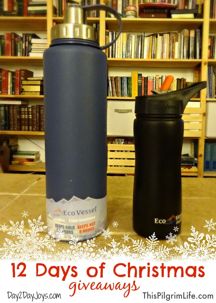 12 Days of Christmas Giveaways: Amazing water bottles from EcoVessel!