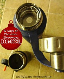 12 Days of Christmas {Day 8: Eco Vessel}