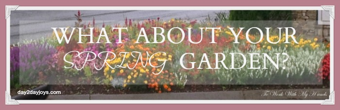 What about your spring garden? Even though it's still cold outside, it's not too early to think about and start planning! Starting now gives you a fun distraction from the chilly temperatures, lays the foundation for a more successful garden, and can save you a lot of money.