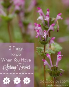3 Things To Do When Spring Fever Hits